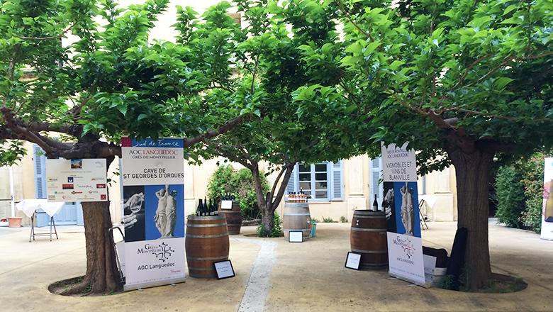 Balade au «Grés» de Montpellier